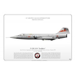 "F-104S ASA ""Starfighter"" 22° GR AM LW-79"