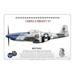 "P-51D ""Mustang"" ""Cripes A' Mighty 3rd"" USAAF PP-02"