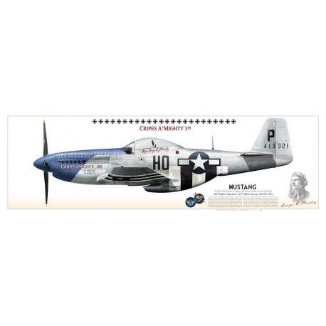 """P-51D """"Mustang"""" """"Cripes A' Mighty 3rd"""" USAAF PP-02P"""
