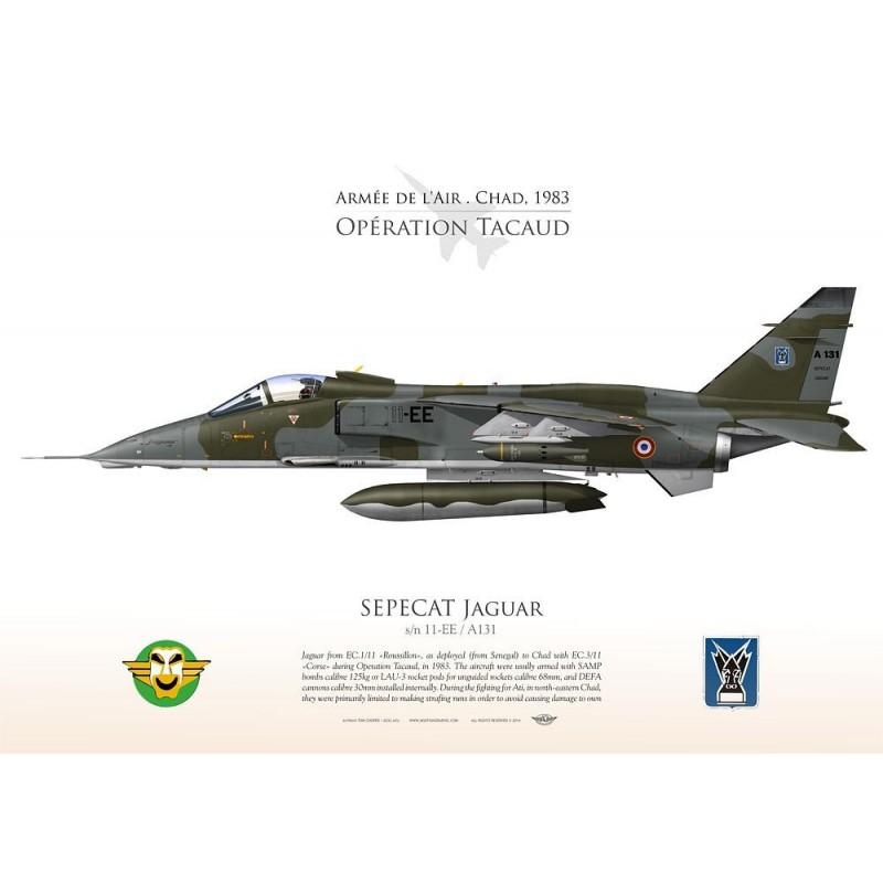SEPECAT JAGUAR AdA 1983 TC-212