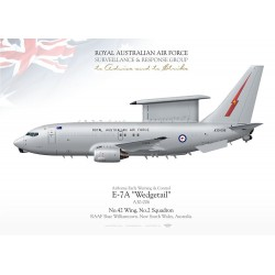 "E-7A ""Wedgetail"" RAAF TC-213"