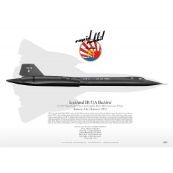 "SR-71A ""Blackbird"" ""Rapd Rabbit"" GM-39"