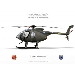 "MD-500E ""Guardiancillo"" FAS LC-24"
