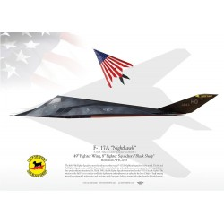 "F-117A ""Nighthawk"" 8FS ""Black Sheep"" MB-70"