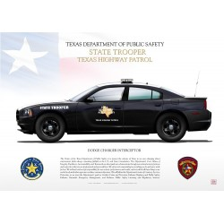 DODGE CHARGER TEXAS DPS JPG-11
