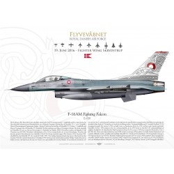 "F-16AM ""Fighting Falcon"" 66th Anniversary JP-2198"