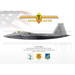 "F-22 ""Raptor"" HAWAII ANG JP-1128"