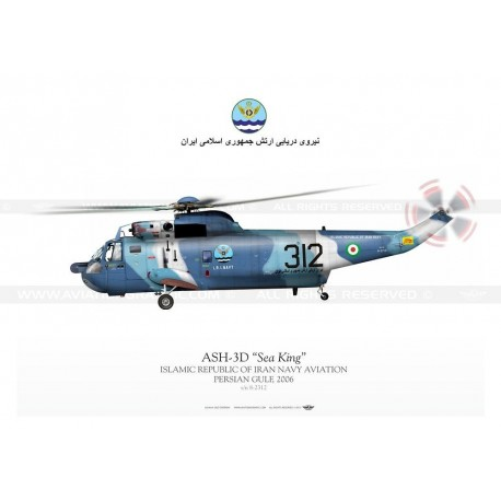 "ASH-3D ""Sea King"" 312 IRINA JP-695"