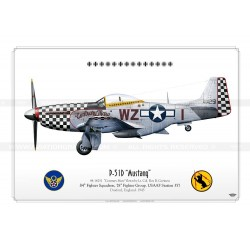 "P-51D ""Mustang"" WZ-I ""Contrary Mary"" BE-05b"