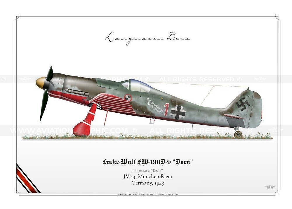 fw-190d-9-dora-jpv-10.jpg