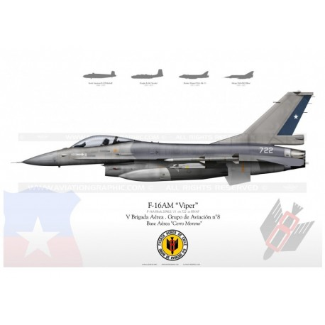 "F-16AM ""Viper"" Chile LW-28"
