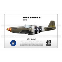"P-51B ""Mustang"" ""old Crow"" B6-S 1944 GM-47"