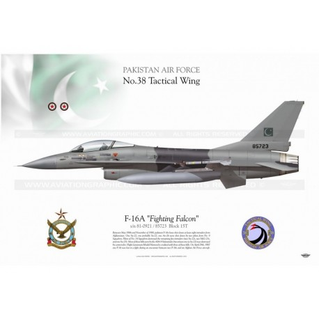"F-16A ""Fighting Falcon"" PAF TC-113"