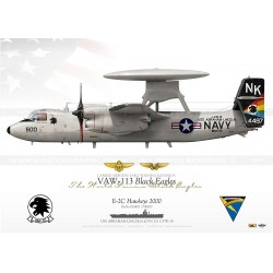 "E-2C ""Hawkeye"" 600 VAW-113 ""Black Eagles"" DP-01"