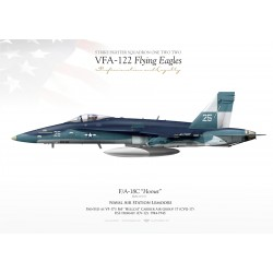 "F/A-18C VFA-122 ""Flying Eagles"" JP-1102"