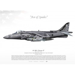"AV-8B+ ""Harrier II"" VMA-231 ""Ace of Spades""  JP-811"