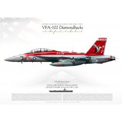 "F/A-18F VFA-102 ""Diamondbacks"" CAG JP-1217"