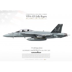 "F/A-18F 201 VFA-103 ""Jolly Rogers"" DP-10"