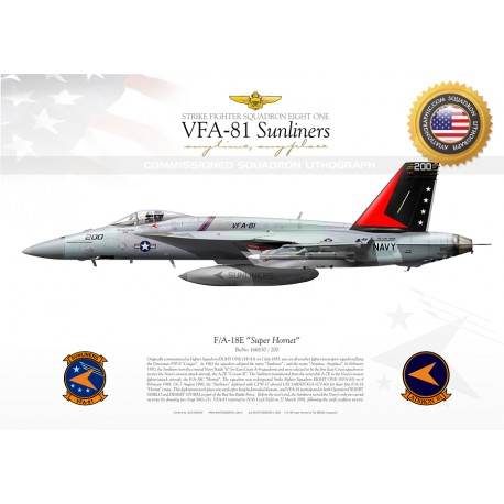 """F/A-18E VFA-81 """"Sunliners"""" CAG JP-950"""