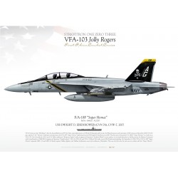 "F/A-18F VFA-103 ""Jolly Rogers"" DP-09"