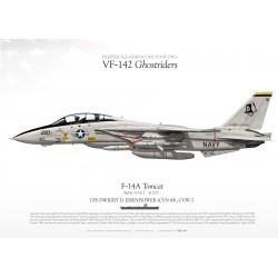 "F-14A ""Tomcat"" VF-142 ""Ghostriders"" DP-16"