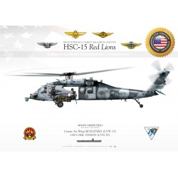 MH-60S ARMED HELO HSC-15  JP-1733