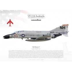"F-4B ""Phantom II"" VF-114 MB-66"