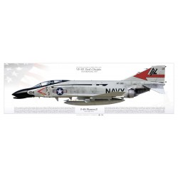 "F-4N ""Phantom II"" VF-301 ""Devil's Disciples"" MB-67P"