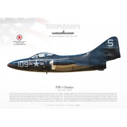 "F9F-3 ""Panther"" VF-51 MB-137"