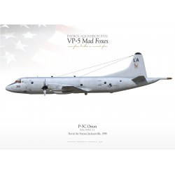 """P-3C """"Orion"""" 318 VP-5 """"Mad Foxes"""" MB-48"""