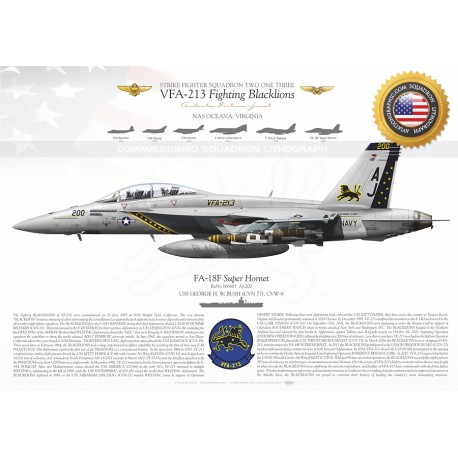 "F/A-18F VFA-213 ""Fighting Blacklions  JP-2530"