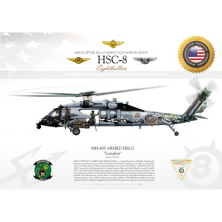 MH-60S ARMED HELO HSC-8 JP-1301