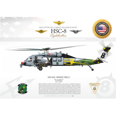 MH-60S ARMED HELO HSC-8 JP-1302