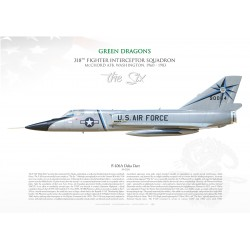 "F-106A ""Delta Dart"" 318th FIS ""GREEN DRAGONS"" MB-144"