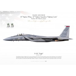 "F-15C ""Eagle"" ZZ 67th FS JP-2219"