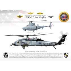 "HSC-22 ""Sea Knights""  JP-3204"