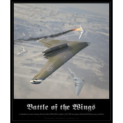 """Battle of the Wings"" SKY-29"